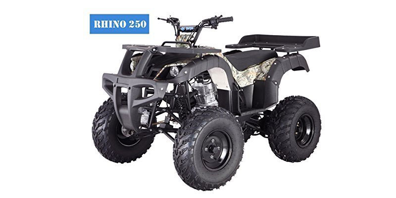 New-Adult-Size-250-Adult-Size-ATV-with-standard-manual-clutch-and-reverse